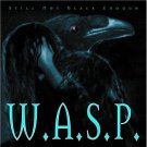 w.a.s.p. - still not black enough CD 1996 castle 13 tracks used mint