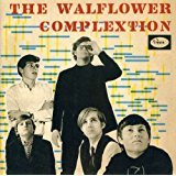 walflower complextion CD 2-discs shadows normal germany 24 tracks used mint
