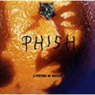 phish - a picture of nectar CD 1992 elektra 16 tracks used mint