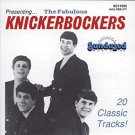 knickerbockers - fabulous knickerbockers CD 1989 sundazed 20 tracks used mint