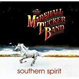 marshall tucker band - southern spirit CD 1990 sisapa curb 12 tracks used mint