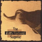 kerry fladland - kerry fladland surprise CD 1995 purple pond kerry me music 7 tracks used mint