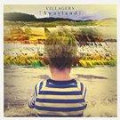 villagers - {awayland} CD 2013 domino recording 11 tracks used like new