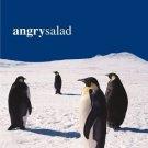 angry salad - angry salad CD 1999 atlantic used like new