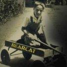 bearcat - bearcat CD EP 2012 5 tracks used like new