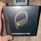 Beats by Dr. Dre Powerbeats Pro Totally Wireless Bluetooth Earphones Green⭐⭐⭐⭐⭐ Authentic!