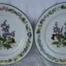 """2 1990 Royal Worcester """"Herb"""" Porcelain Salad Plates- Sage"""