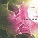 WWW: Wake (WWW, 1) by Robert J. Sawyer