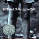 Pictures of Hollis Woods by Patricia Reilly Giff