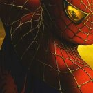 """Spider-Man 2 Ver A Movie Poster Orig Double Sided  27""""x40"""""""