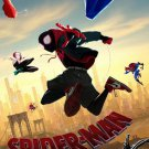 """Spider-man Into the Spider Verse B Movie Poster Double Sided 27x40 Original 27""""x40"""""""