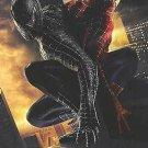 "Spider-Man 3 Adv C (BATTLE) Embossed Movie Poster Original Single Sided 27""x40"""