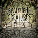 Beautiful Creatures Advance 2013 Double Sided Original movie Poster 27×40