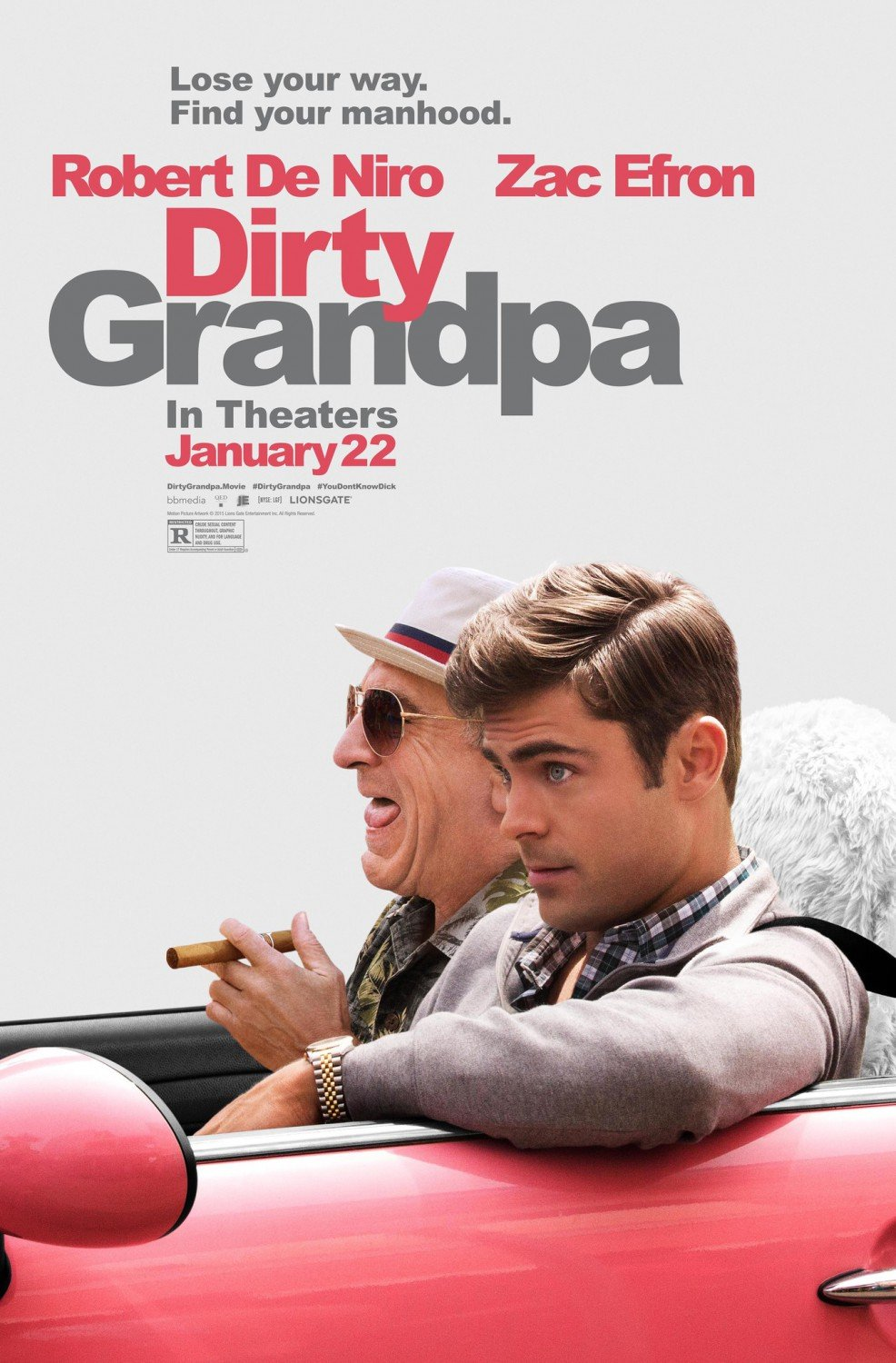 Dirty Grandpa Advance Double Sided Original Movie Poster 27�40