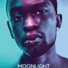 Moonlight Original Movie Poster Double Sided 27×40