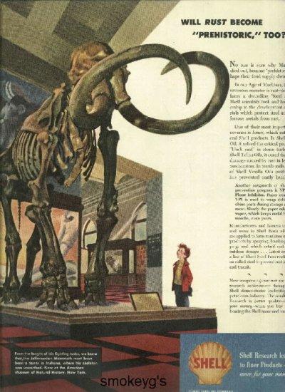 Jeffersonian Natural History Museum