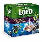 4 x LOYD Blackberry & Blueberry Flavor Fruit Tea Boxed 20 Pyramid Bags