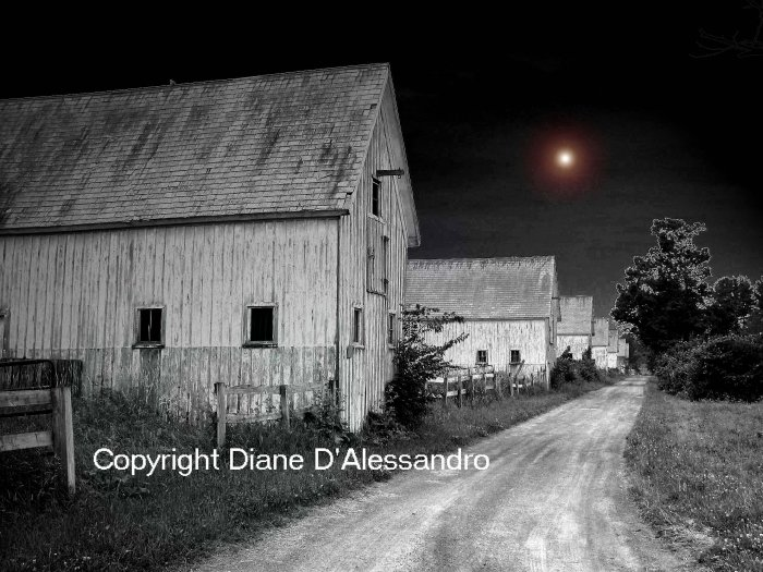 Sanford Farms Black and White Photography