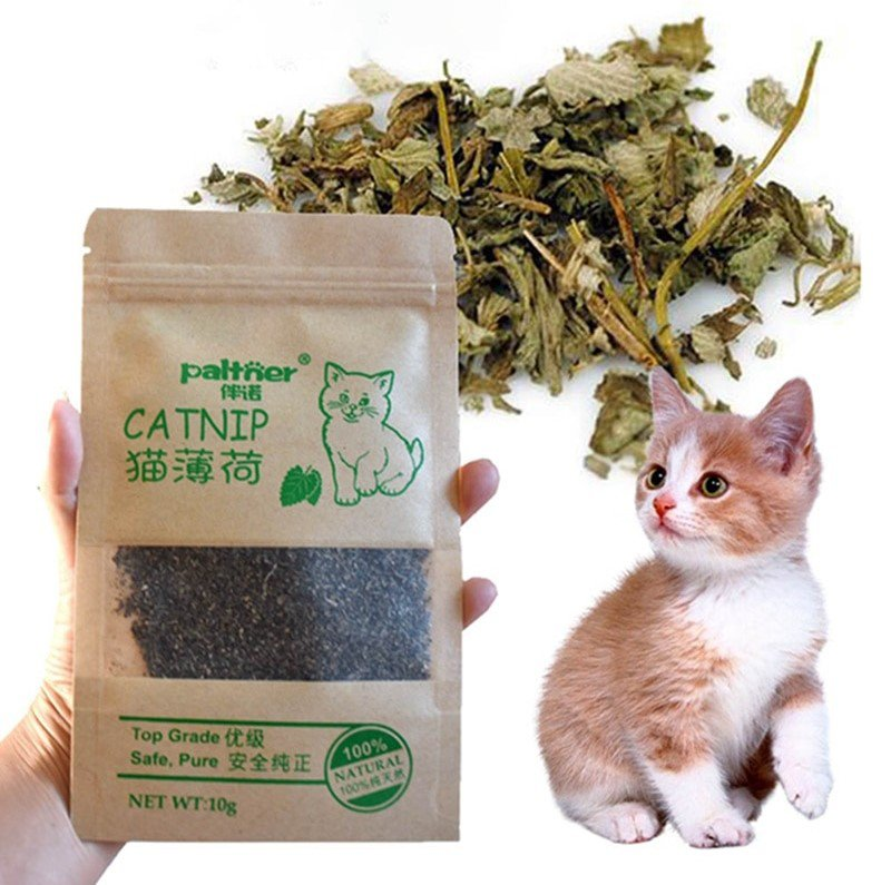 Pet Supplies Menthol Flavor Funny Cat Toys New Organic 100% Natural Premium Catnip Cattle