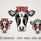 HUGE Cow-Bundle-Cow-Face-Cow Graphic Desing T-shirt in SVG EPS PNG and DXF files