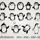HUGE Bundle Penguin-Bundle-Penguin Graphic Desing T-shirt in SVG EPS PNG and DXF files