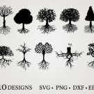 HUGE Bundle Tree-Bundle-Tree-Tree Graphic Desing T-shirt in SVG EPS PNG and DXF files