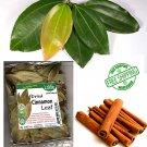 25 pcs 100% Pure and Organic Sun Dried Cinnamon Leaves From Sri Lanka