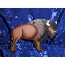 WILD BUFFALO AMERICAN WILDERNESS COUNTRY RUSTIC METAL FOLK ART DECOR HANGER