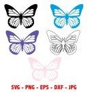 Butterfly Digital Art 5-SVG, 5-PNG, 5-EPS, 5-dxf, 5-jpg Digital Download