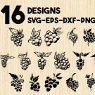 Grape clipart Digital Art SVG, PNG, EPS, dxf, jpg Digital Download