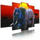 african elephant at night canvas art, framed wall art, office art