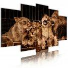 lions family canvas art, framed wall art, living room art, gallery
