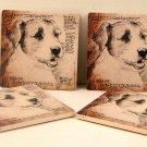 Jack Russell Terrier Coasters Set of 4