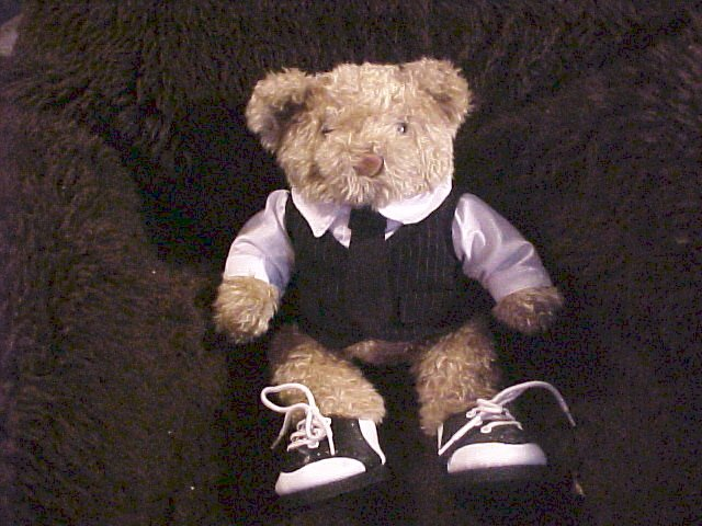 "Groom Suit & Tie 15"" Plush Bear"