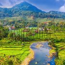 Digital Photo Wallpaper Background Screensaver Desktop-Village, rice fields, river