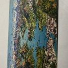 UNUSED VINTAGE POSTCARD - VIERWALDSTATTERSEE LAKE LUCERNE SWITZERLAND (KK2570)