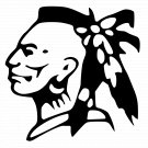 Indian Warrior Vinyl Decal Sticker Native American Symbol Car Laptop Wall Window Boat Mailbox Spirit