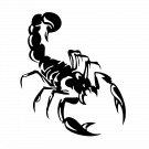 Scorpion Vinyl Decal Sticker Design #3 Car Window Wall Laptop iPhone Bumper Weatherproof Vinyl