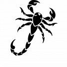 Scorpion Vinyl Decal Sticker Design #5 Car Window Wall Laptop iPhone Bumper Weatherproof Vinyl