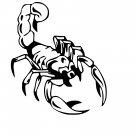 Scorpion Vinyl Decal Sticker Design #6 Car Window Wall Laptop iPhone Bumper Weatherproof Vinyl