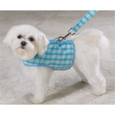 East Side Collection Madras Plaid Harness Vests