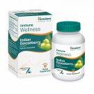 Himalaya Wellness  Amalaki Immunity Wellness |Promotes health | -Pack of 60 Tablets