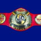 JCW Juggalo Championship Wrestling World Title Belt