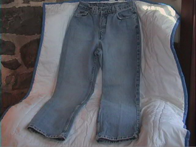 New York and Company, Blue Jeans Womans 8 Petite *Classic Cut*  Excellent used condition!