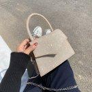 Wild Chain Crossbody Bag