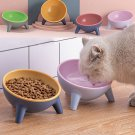 Cat Dog Bowl With Stand Pet Feeding Food