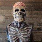 Halloween Skeleton Mask Skull Mask Headgear