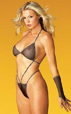 Tease - Fishnet and Leopard Print Bodycover