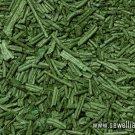 Spirulina Algae 50g