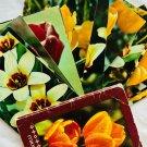 Vintage Set Of Postcards Tulips Flowers USSR 1975 Chrome Photo Cards Post